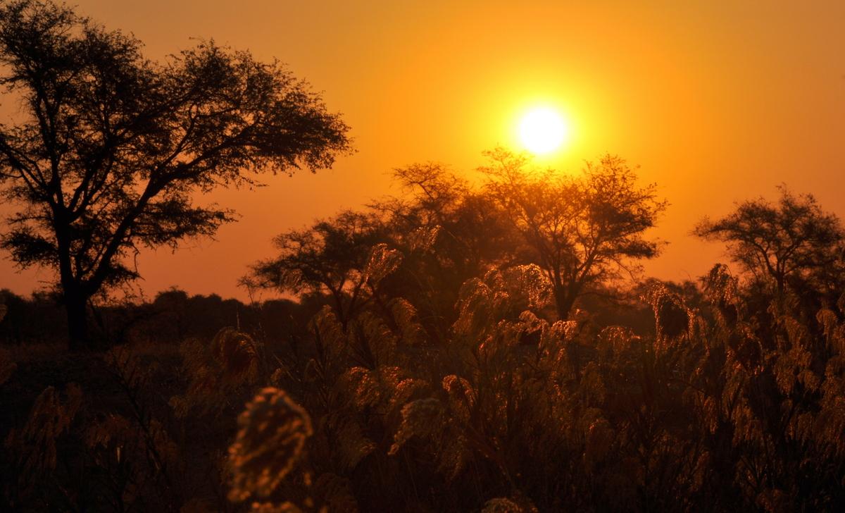 Zwischen Sambia und Simbabwe   mit dem Kanu unterwegs auf dem Sambesi sonne simbabwe safari reisebericht afrika  TUI Berlin Reisebüro Paddeltour Sambesi Sonnenuntergang