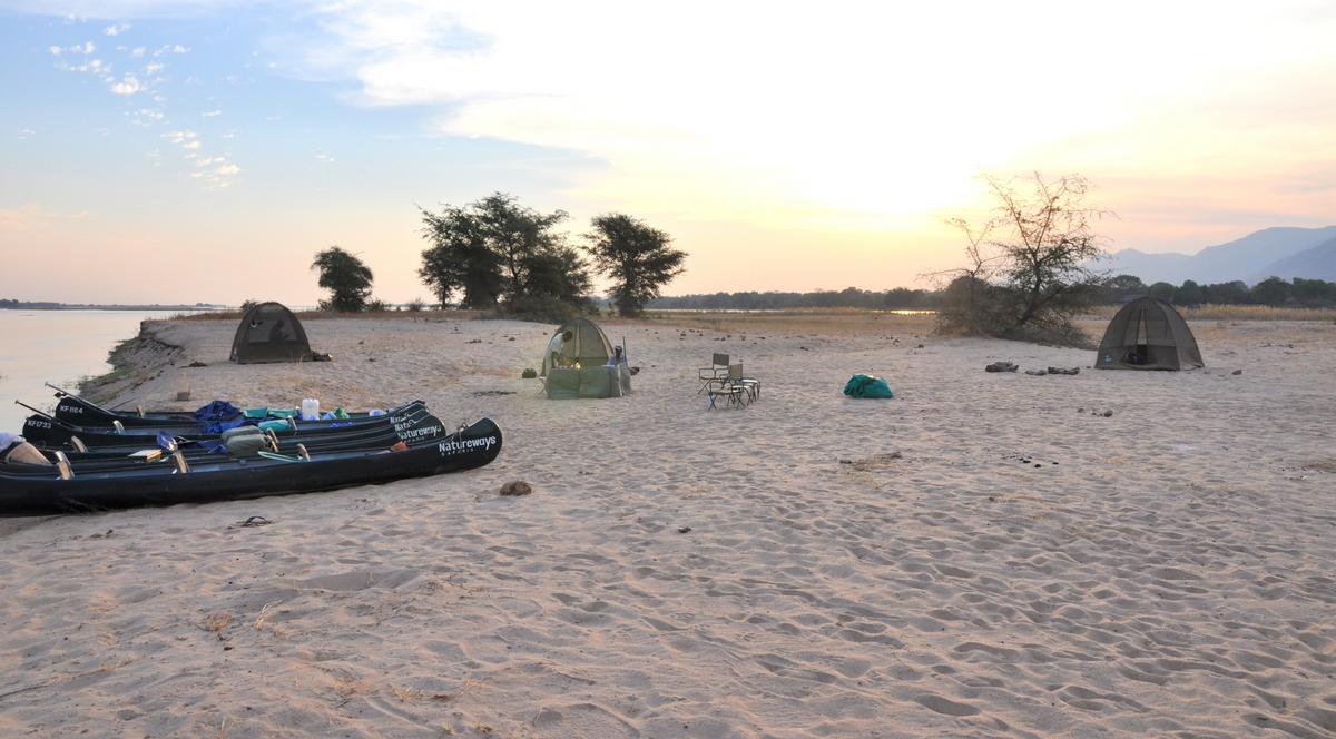 Zwischen Sambia und Simbabwe   mit dem Kanu unterwegs auf dem Sambesi sonne simbabwe safari reisebericht afrika  TUI Berlin Reisebüro Paddeltpur Sambesi Sandbank