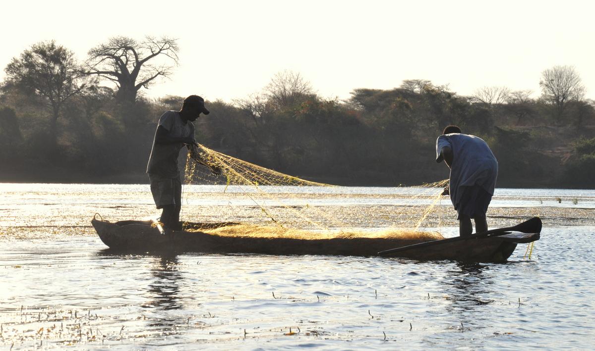 Zwischen Sambia und Simbabwe   mit dem Kanu unterwegs auf dem Sambesi sonne simbabwe safari reisebericht afrika  TUI Berlin Reisebuero Paddeltour Sambesi Fischer