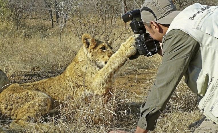 Was Sie noch nicht über Afrika wussten.... tui hotels tansania suedafrika strand simbabwe namibia kenia italien expertentipps botswana  tui berlin fotosafari loewe
