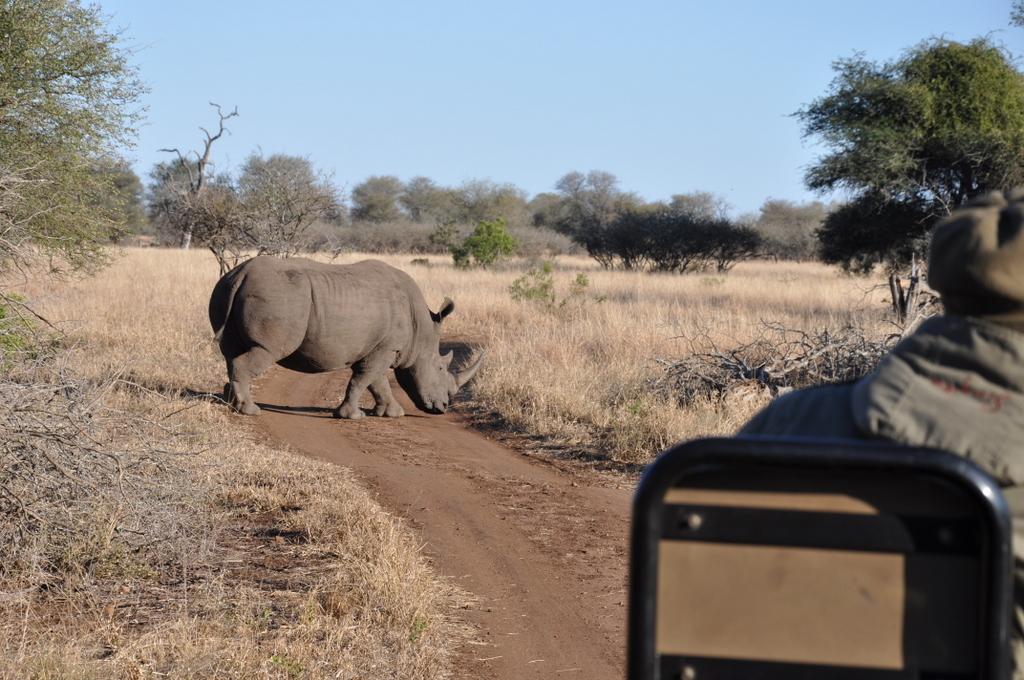 Traumlodge. Südafrika vom Krüger Park nach Kapstadt. suedafrika sonne safari afrika  DSC 0609