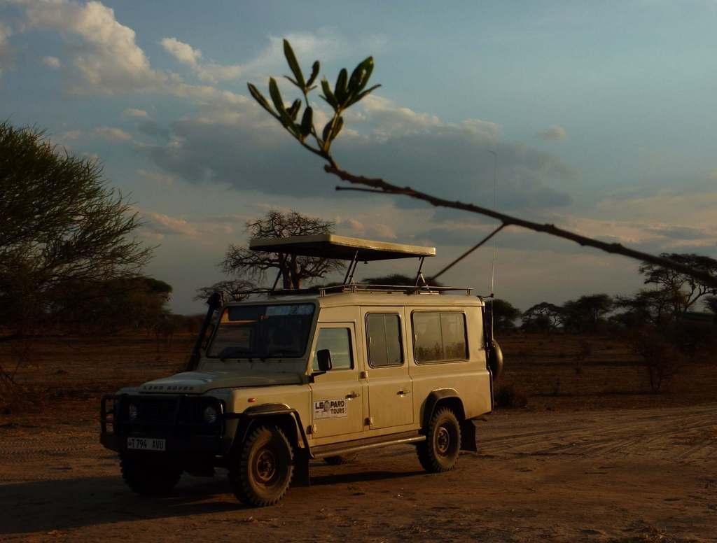 Karibu.Tansania und Sansibar. tansania sonne safari afrika  Karibu10