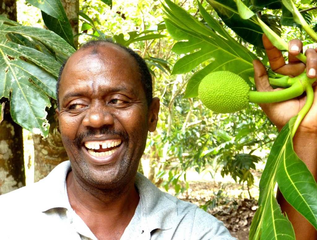 Karibu.Tansania und Sansibar. tansania sonne safari afrika  Karibu18