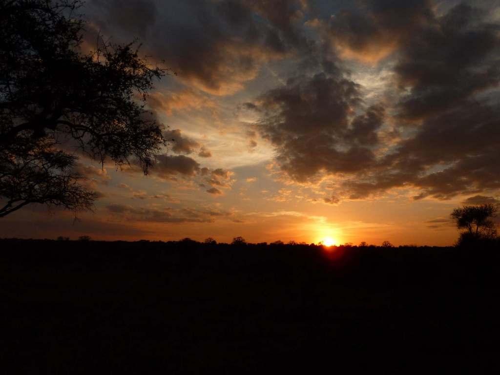 Karibu.Tansania und Sansibar. tansania sonne safari afrika  Karibu8