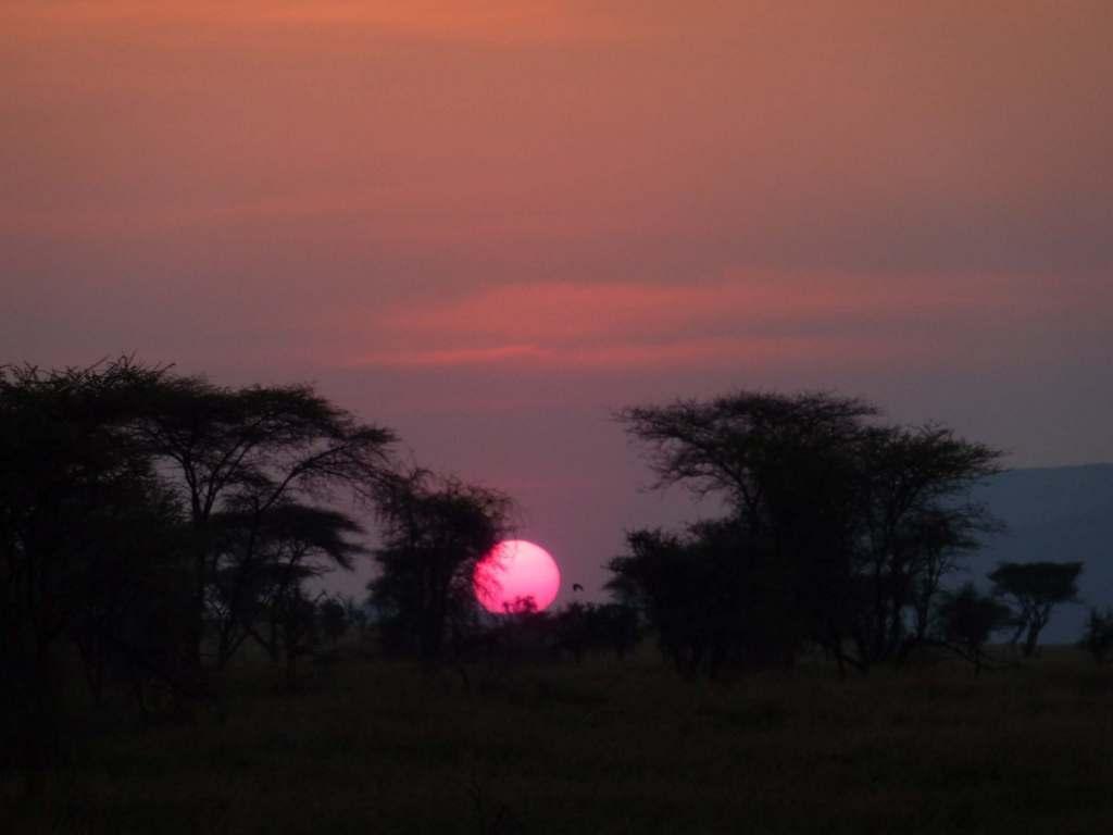 Karibu.Tansania und Sansibar. tansania sonne safari afrika  Karibu9