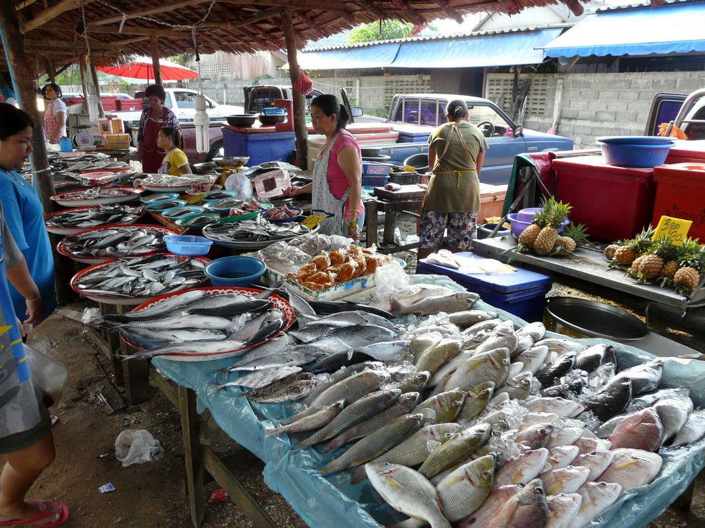 Südthailand. Khao Lak thailand strand sonne asien  P1040524