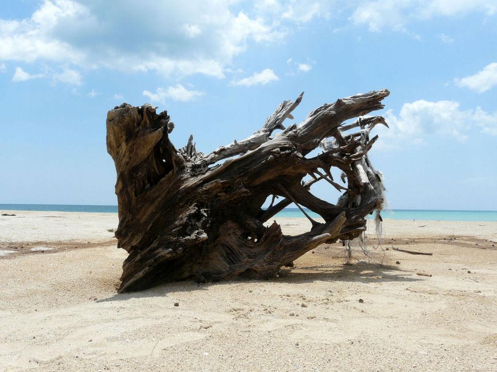 Südthailand. Khao Lak thailand strand sonne asien  P1040841