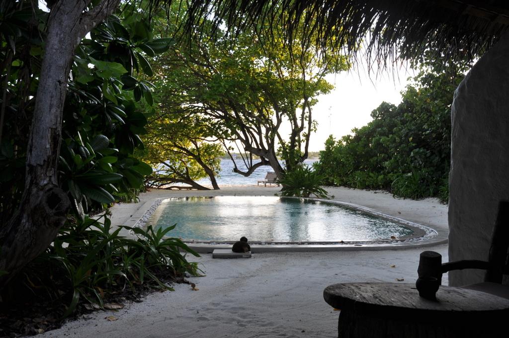 Six senses island hopping auf den malediven world of tui for Indischer laden berlin