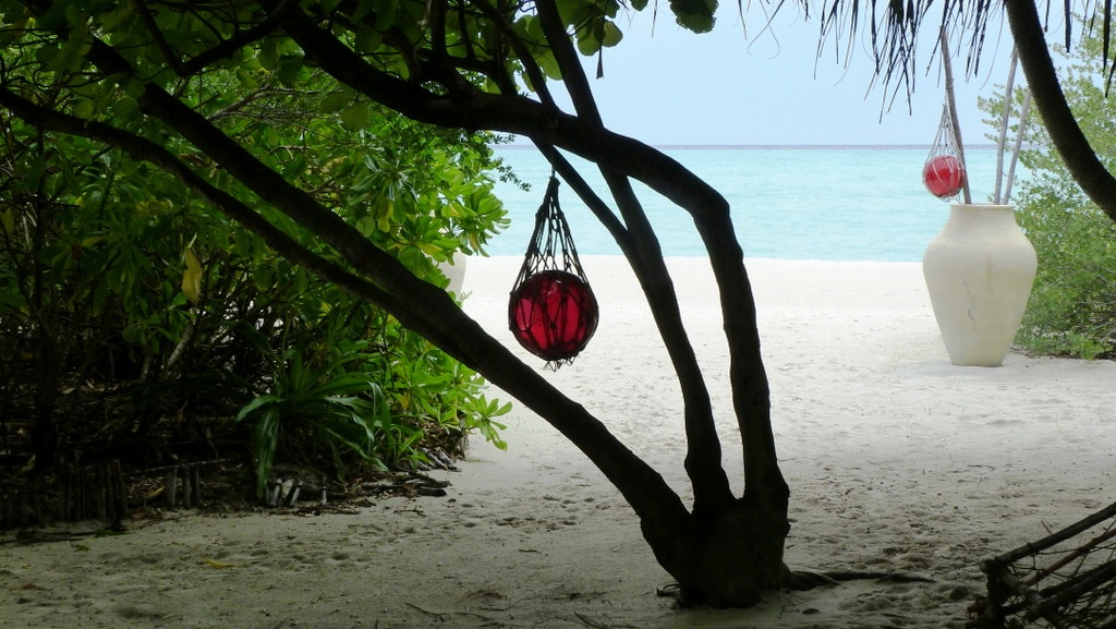 Kurztrip auf die Malediven. Mit Qatar Airways nach Kanuhura strand sonne malediven indischer ozean orient familie  P1030524