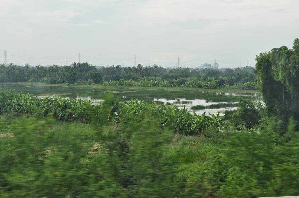 Sawasdee! Wie ich Thailand lieben lernte. thailand staedtereisen sonne asien  DSC 0178