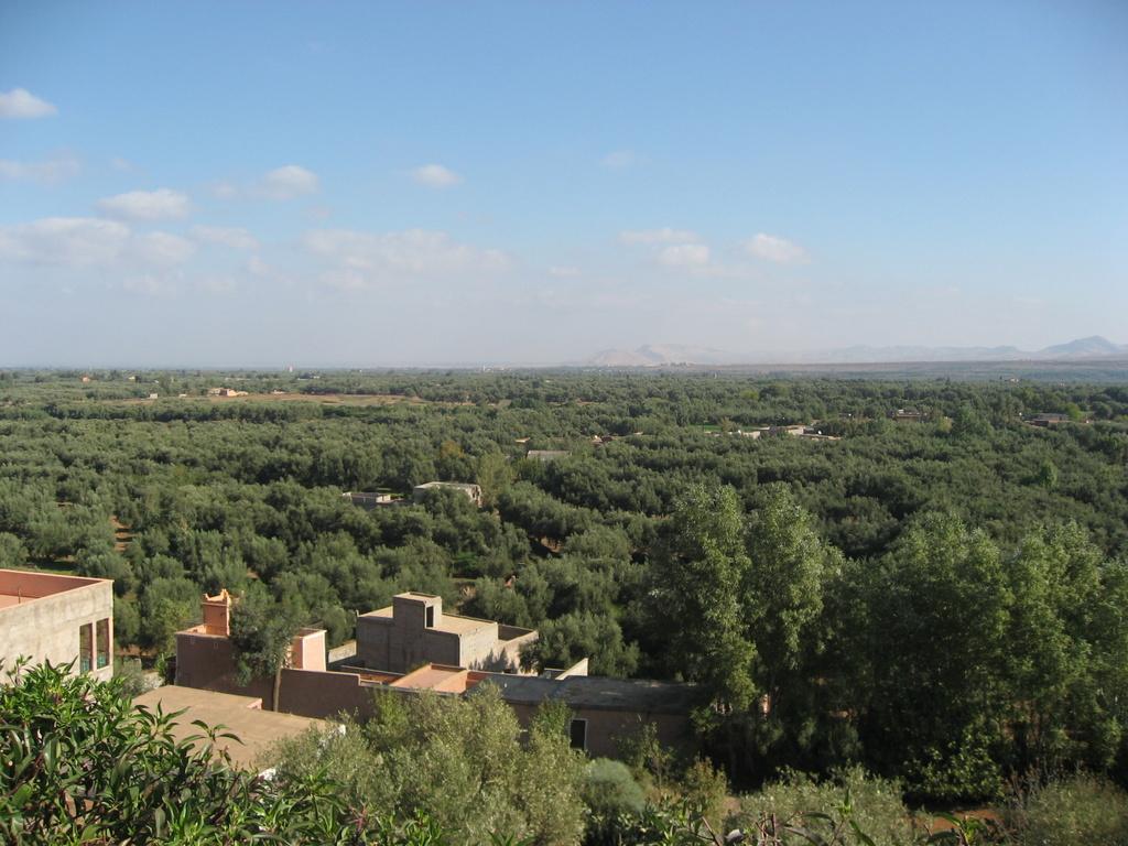 Marrakesch. 1001 Nacht. staedtereisen sonne marokko afrika  IMG 0153