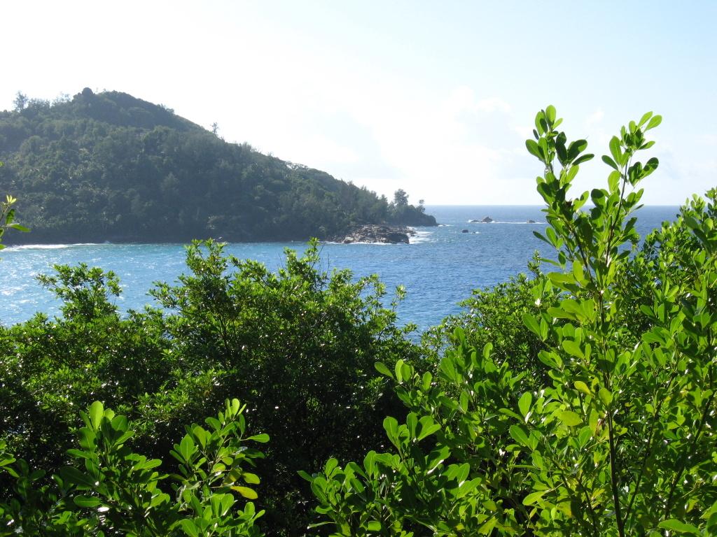Sehnsuchtsziel Seychellen und glitzerndes Dubai strand sonne seychellen indischer ozean orient honeymoon 2 dubai  Bild 013