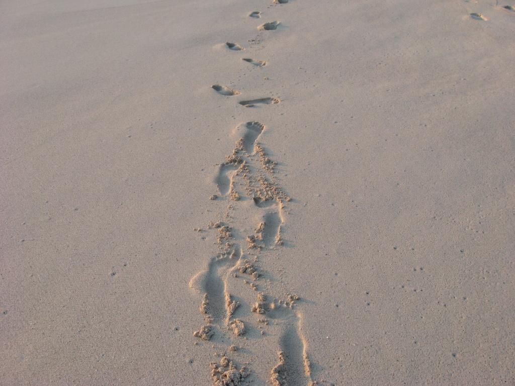 Sehnsuchtsziel Seychellen und glitzerndes Dubai strand sonne seychellen indischer ozean orient honeymoon 2 dubai  Bild 027