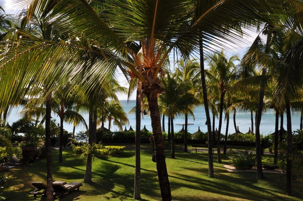 Mauritius und Ras Al Khaimah. Eine Strand  und Wüstenkombination. sonne mauritius indischer ozean orient honeymoon 2  tui berlin mauritius beachcomber royal palm palmen