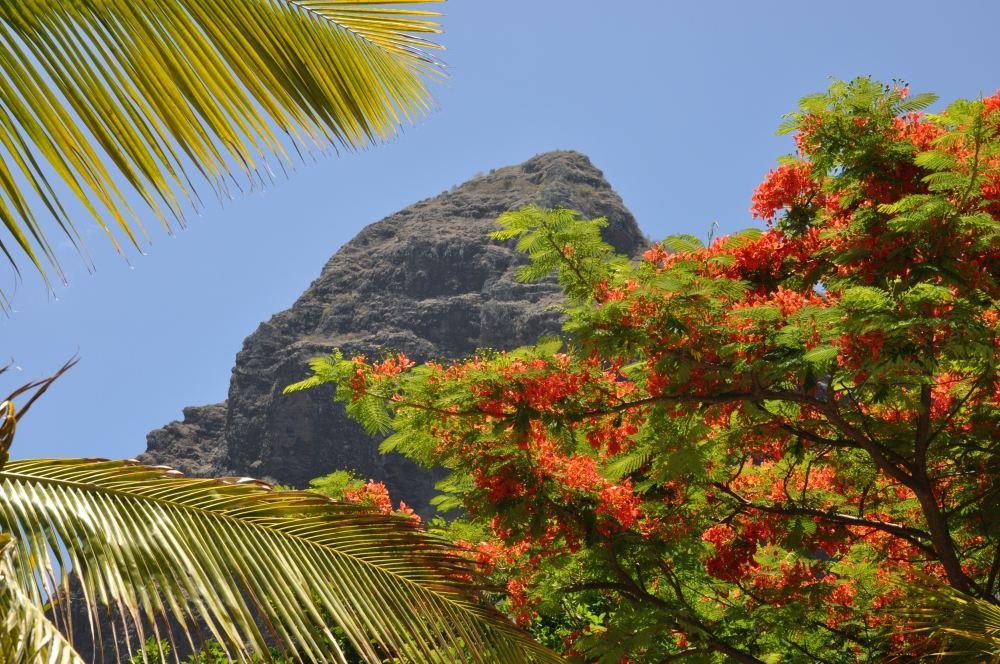 Mauritius und Ras Al Khaimah. Eine Strand  und Wüstenkombination. sonne mauritius indischer ozean orient honeymoon 2  tui berlin mauritius le morne ausblick