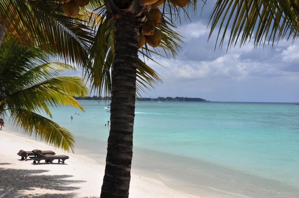 Mauritius und Ras Al Khaimah. Eine Strand  und Wüstenkombination. sonne mauritius indischer ozean orient honeymoon 2  tui berlin mauritius trou aux biches strand palme