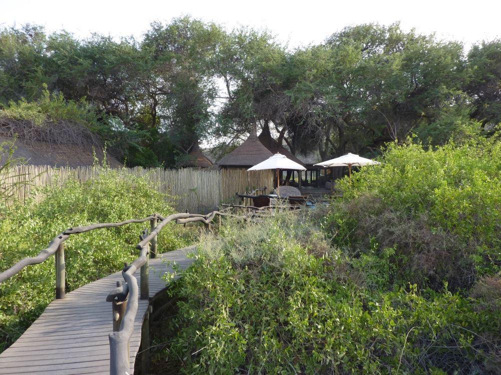 Namibia Treasures. sonne safari namibia afrika  tui berlin namibia serra cafema vegetation