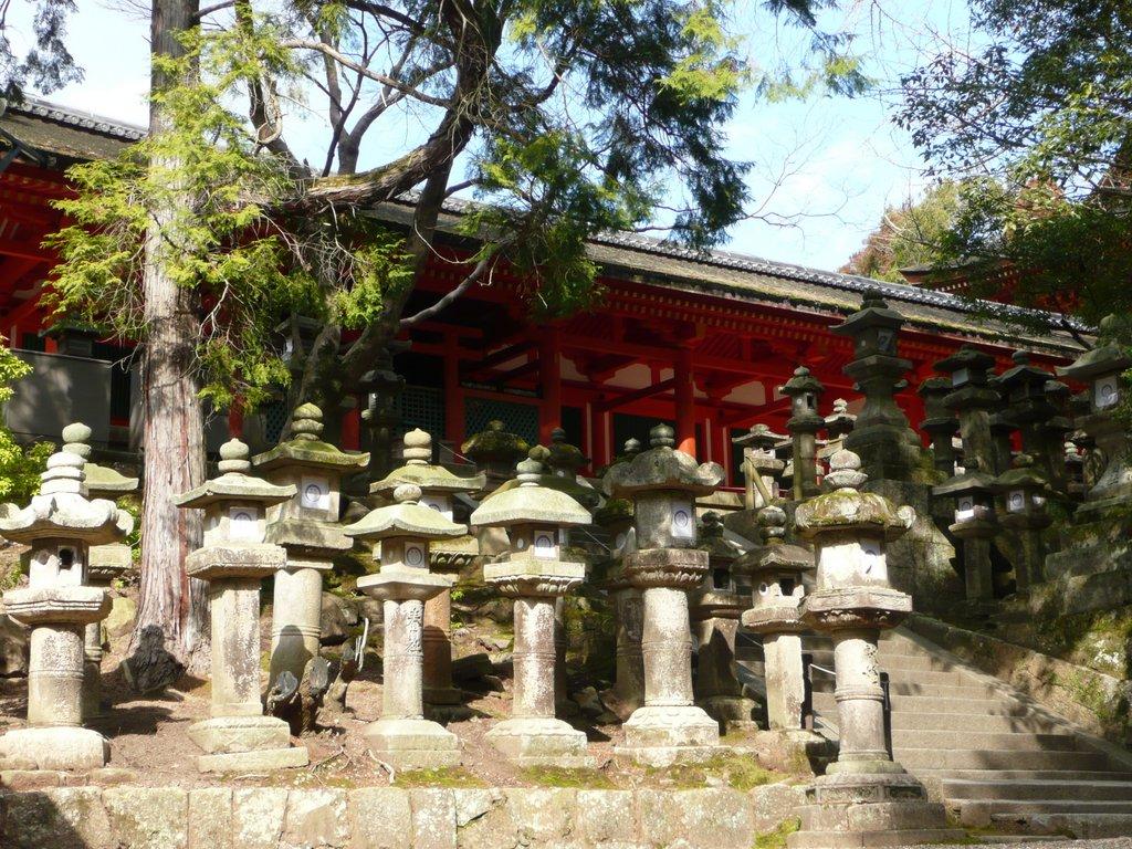 Japan. Das Land der aufgehenden Sonne. staedtereisen land und leute asien  tui berlin japan nara park kasuga schrein steinlaternen