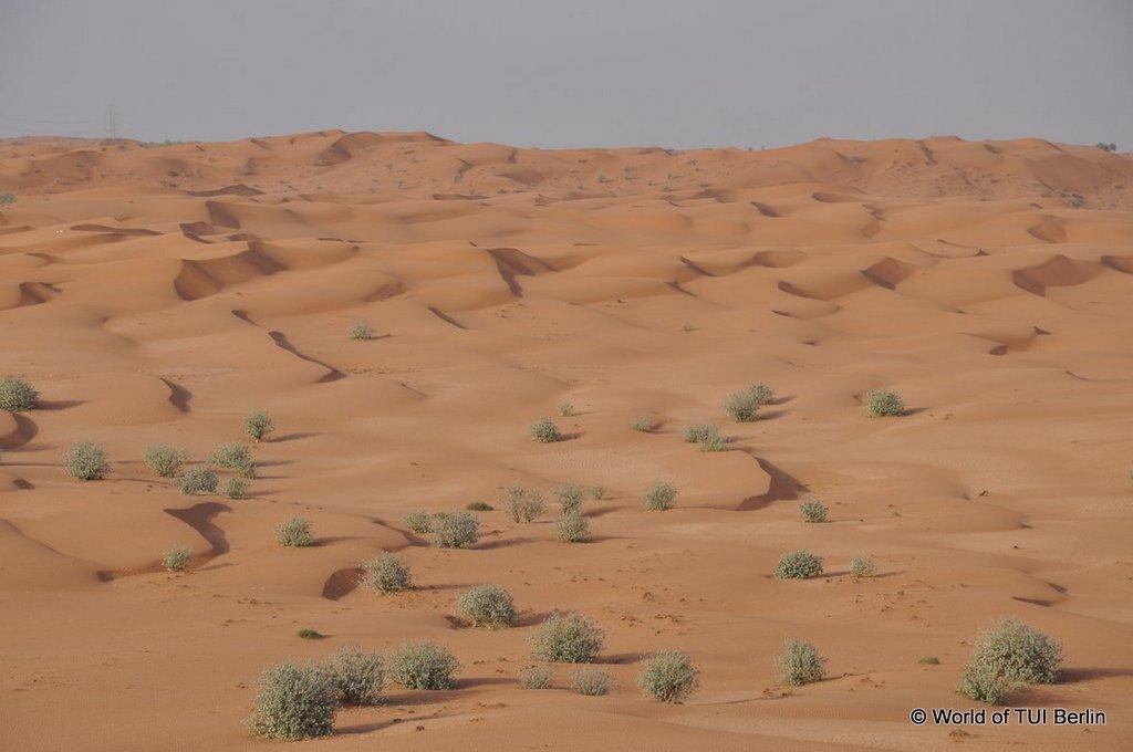 Sandboarding in Ras Al Khaimah. Eine Auszeit im Banyan Tree Al Wadi. staedtereisen sonne orient dubai  tui berlin ras al khaimah banyan tree al wadi ausblick