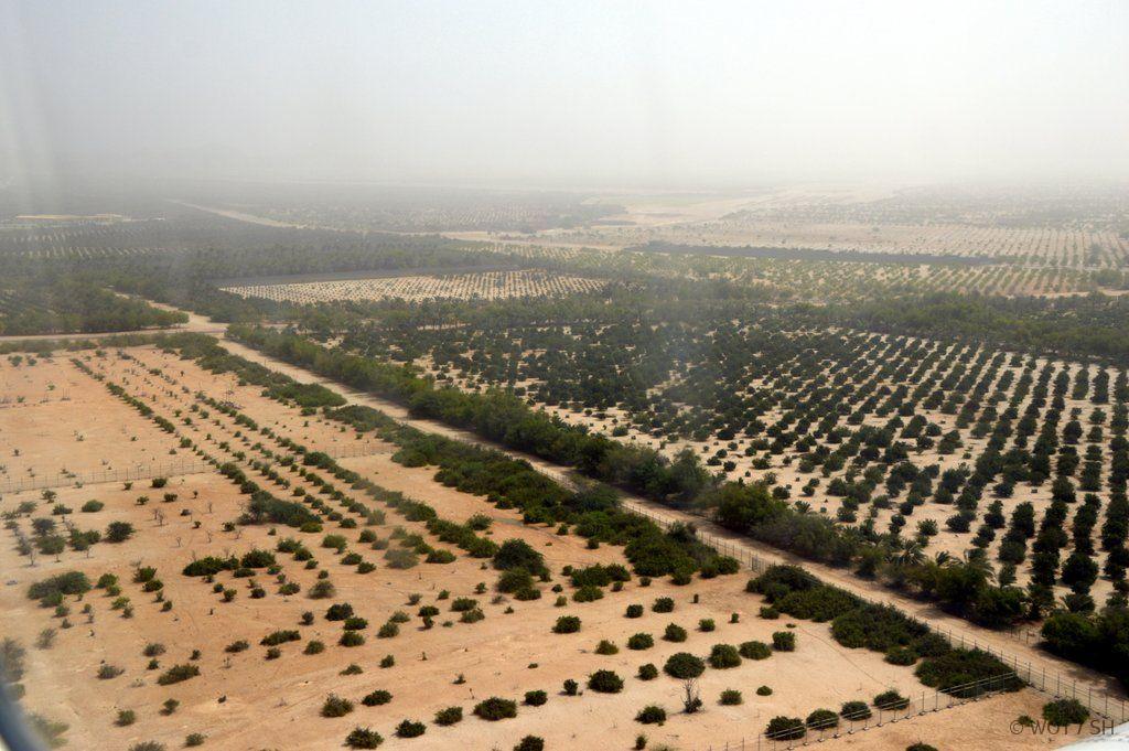 Zwischen Tradition und Moderne. Oman und Abu Dhabi strand staedtereisen sonne land und leute orient oman abu dhabi  DSC 03291