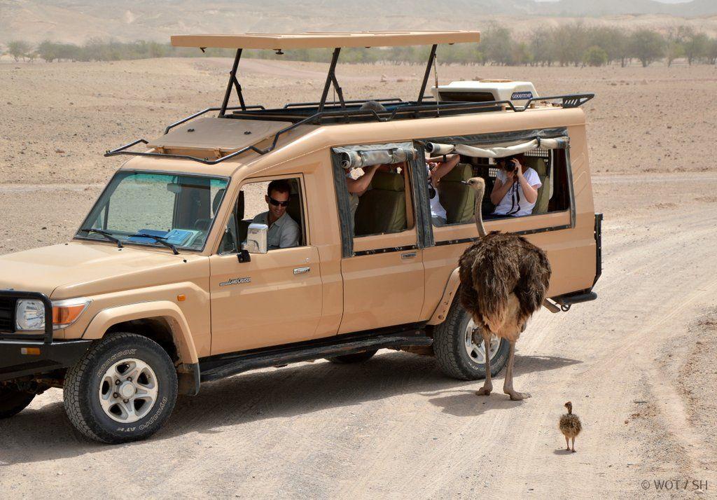 Zwischen Tradition und Moderne. Oman und Abu Dhabi strand staedtereisen sonne land und leute orient oman abu dhabi  DSC 03641