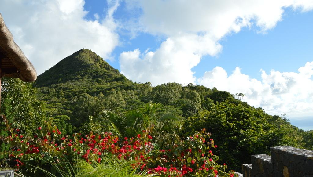 Mauritius. Auf den Spuren der Zuckerbarone. strand sonne mauritius indischer ozean orient honeymoon 2  DSC 00701