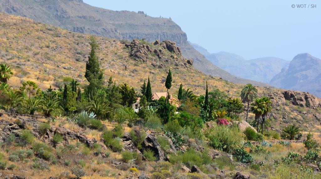 Schönheit wohnt im Hinterland. Gran Canaria abseits der Strände. strand sonne kanaren familie europa  tui berlin gran canaria berge oase
