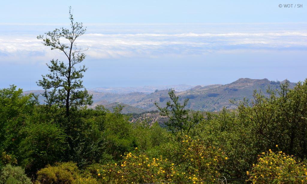 Schönheit wohnt im Hinterland. Gran Canaria abseits der Strände. strand sonne kanaren familie europa  tui berlin gran canaria vegetation norden