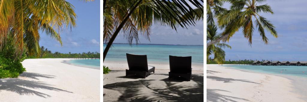 Shangri La Villingili   von Puderzuckerstrand und anderen Nebensächlichkeiten strand sonne reisebericht malediven indischer ozean orient honeymoon 2  tui berlin shangri la villingili canva