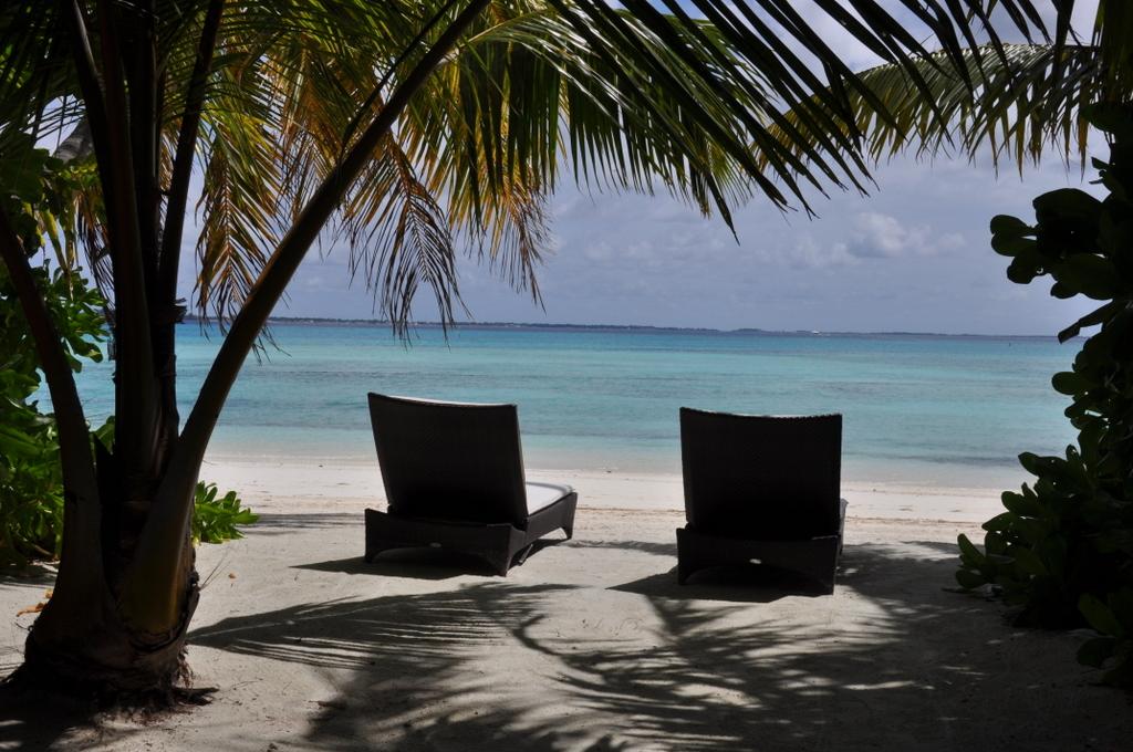 Shangri La Villingili   von Puderzuckerstrand und anderen Nebensächlichkeiten strand sonne malediven indischer ozean orient honeymoon 2  tui berlin Malediven Shangri La Villingili Strandliegen