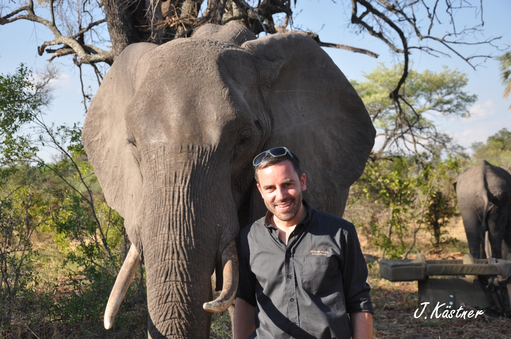 Botswana Treasures. sonne safari botswana afrika  tui berlin Botswana Abu Camp Joerg Kaestner Walking Safari Elefant