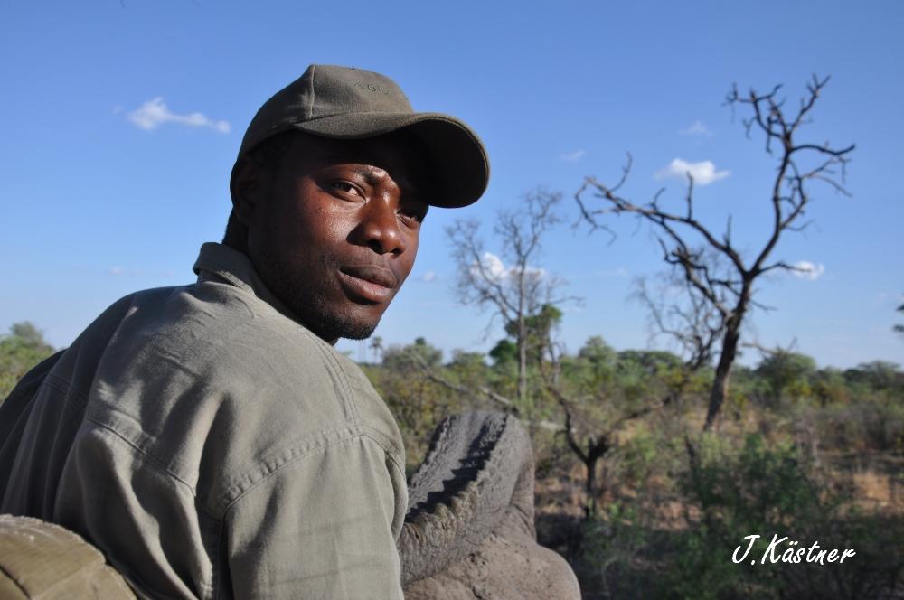 Botswana Treasures. sonne safari botswana afrika  tui berlin Botswana Abu Camp Mahout
