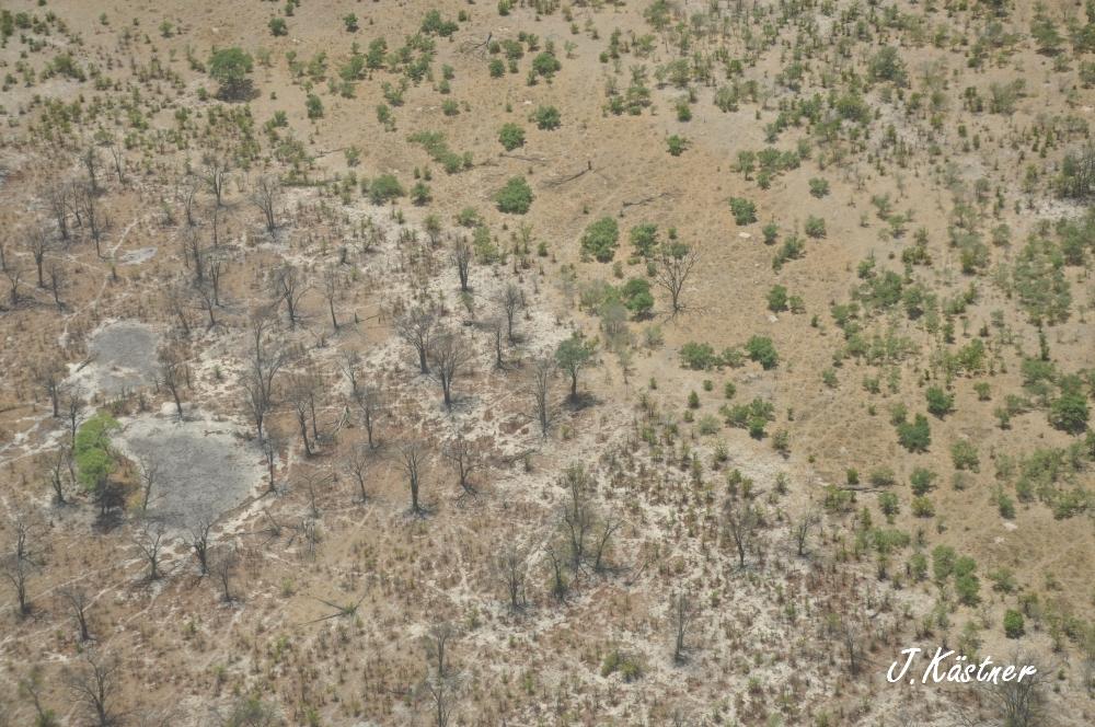 Botswana Treasures. sonne safari botswana afrika  tui berlin Botswana Flug
