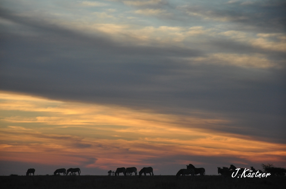 Botswana Treasures. sonne safari botswana afrika  tui berlin Botswana Jacks Camp Kalahari Sonnenuntergang