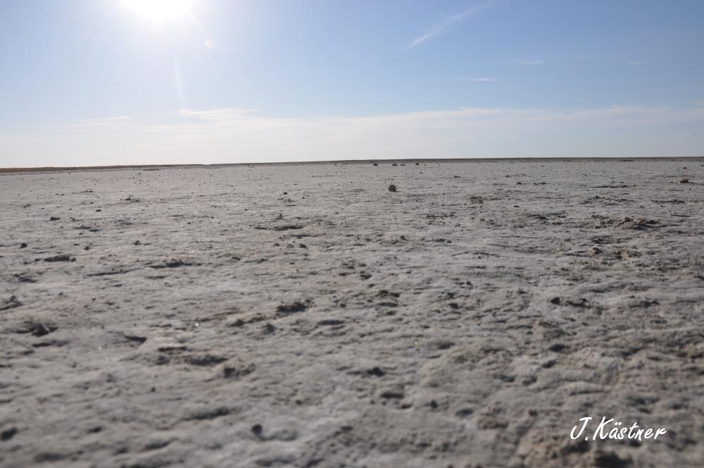 Botswana Treasures. sonne safari botswana afrika  tui berlin Botswana Jacks Camp Kalahari Wueste