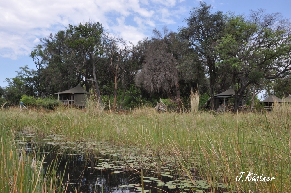 Botswana Treasures. sonne safari botswana afrika  tui berlin Botswana Okavango Delta Little Vumbura Camp Sumpf