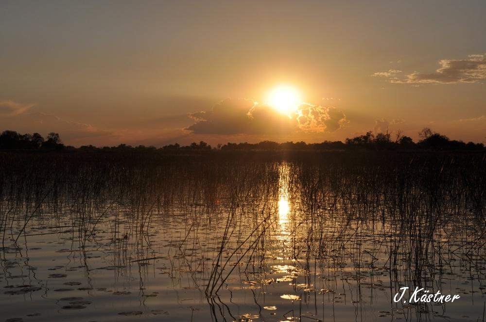 Botswana Treasures. sonne safari botswana afrika  tui berlin Botswana Okavango Delta Sonnenuntergang