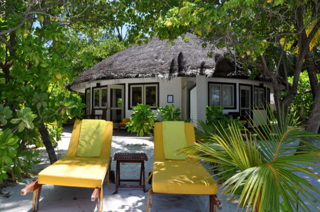 Malediven. Bring mich auf die Palme. Banyan Tree und Angsana. strand sonne malediven indischer ozean orient honeymoon 2  tui berlin malediven angsana velavaru beach villa