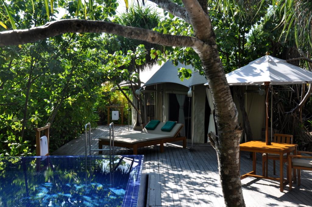 Malediven. Bring mich auf die Palme. Banyan Tree und Angsana. strand sonne malediven indischer ozean orient honeymoon 2  tui berlin malediven banyan tree madivaru villa