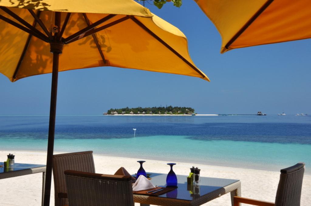 Malediven. Bring mich auf die Palme. Banyan Tree und Angsana. strand sonne malediven indischer ozean orient honeymoon 2  tui berlin Malediven Angsana Ihuru