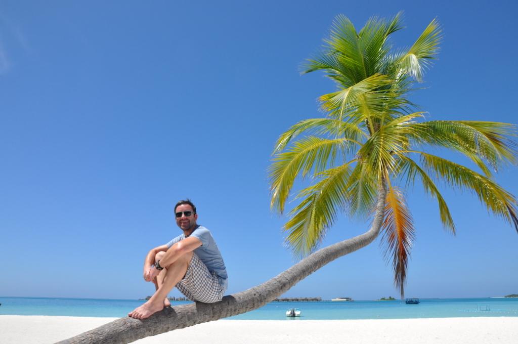 Malediven. Bring mich auf die Palme. Banyan Tree und Angsana. strand sonne malediven indischer ozean orient honeymoon 2  tui berlin Malediven Palme Joerg Kaestner