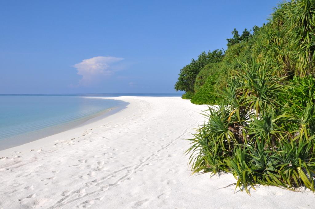 Malediven. Bring mich auf die Palme. Banyan Tree und Angsana. strand sonne malediven indischer ozean orient honeymoon 2  tui berlin Malediven Sandstrand