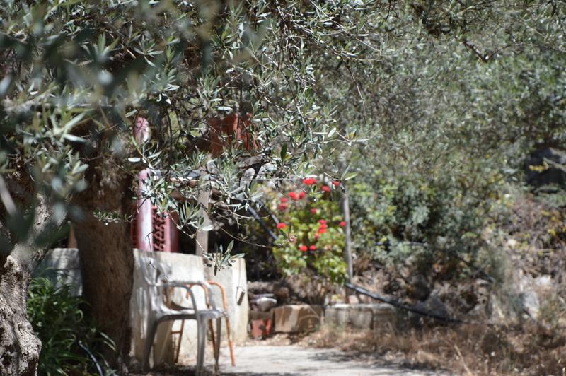 Glücklich Kochen auf Kreta strand sonne griechenland familie europa  tui berlin kreta griechenland daios cove kritsa