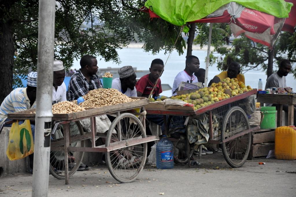 Hunderttausend Gnus und wir. Begegnungen in Tansania. tansania safari afrika  tui berlin Tansania Dar Es Salaam
