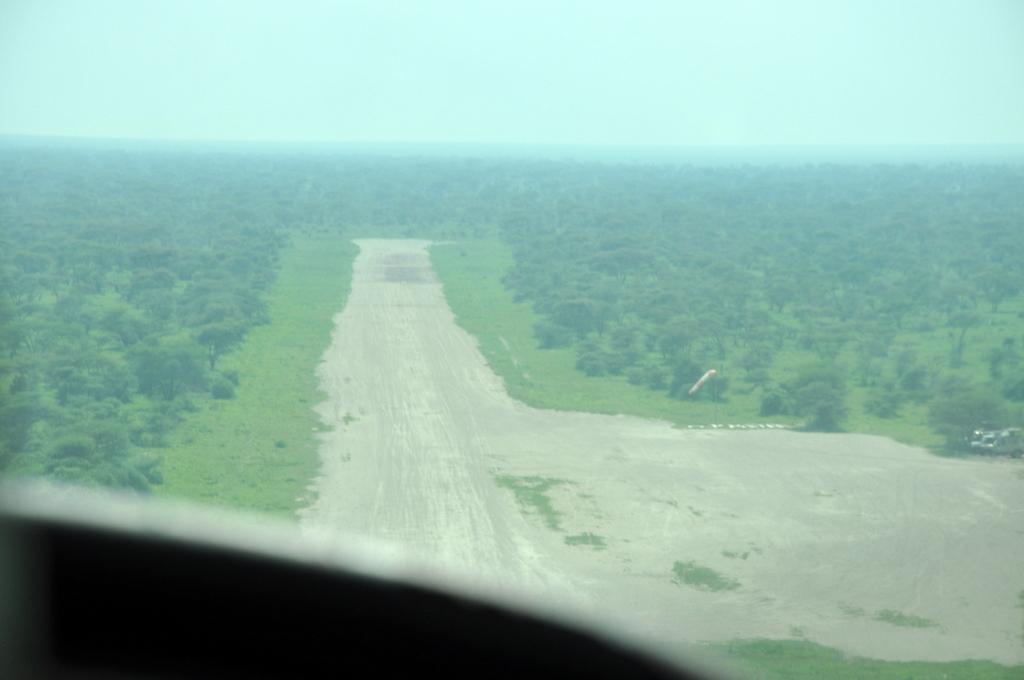 Hunderttausend Gnus und wir. Begegnungen in Tansania. tansania safari afrika  tui berlin Tansania Flugpiste