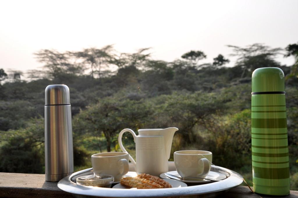 Hunderttausend Gnus und wir. Begegnungen in Tansania. tansania safari afrika  tui berlin Tansania Hatari Lodge frueh am Morgen