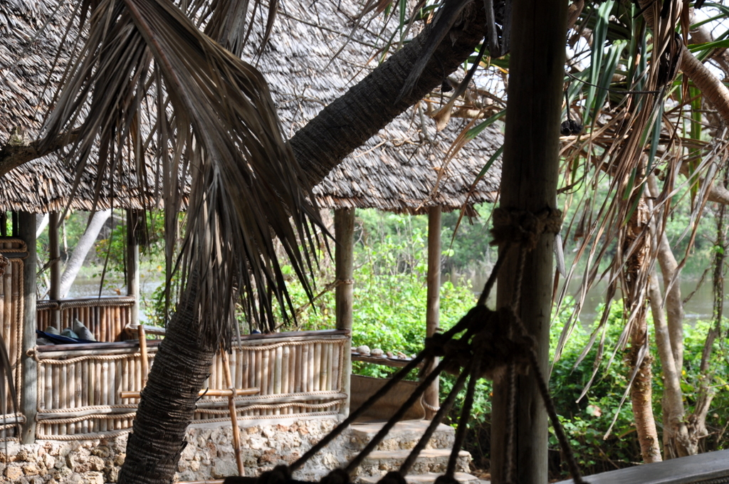 Hunderttausend Gnus und wir. Begegnungen in Tansania. tansania safari afrika  tui berlin Tansania Ras Kutani Cottage