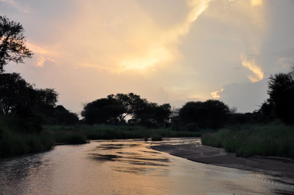 Hunderttausend Gnus und wir. Begegnungen in Tansania. tansania safari afrika  tui berlin Tansania Ruaha Sonnenuntergang