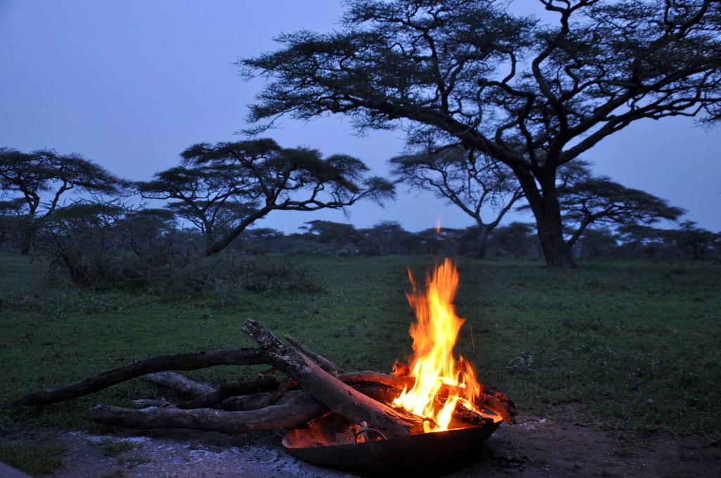 Hunderttausend Gnus und wir. Begegnungen in Tansania. tansania safari afrika  tui berlin Tansania Serengeti Camp Lagerfeuer