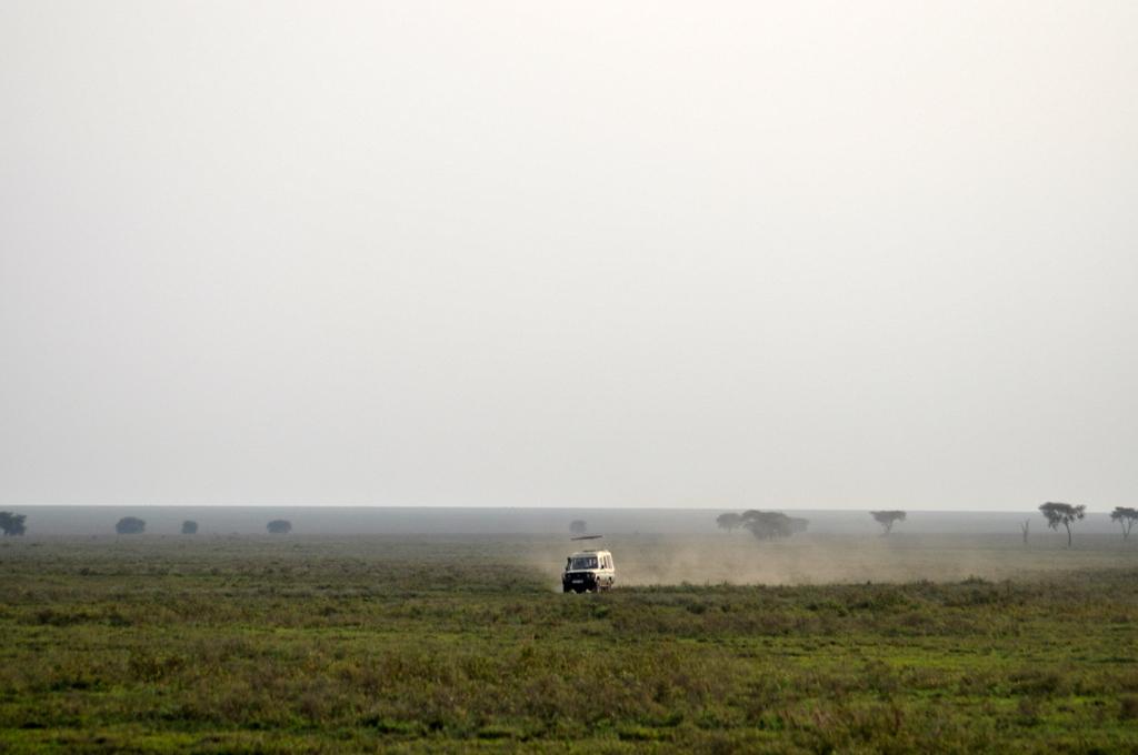 Hunderttausend Gnus und wir. Begegnungen in Tansania. tansania safari afrika  tui berlin Tansania Serengeti Jeep